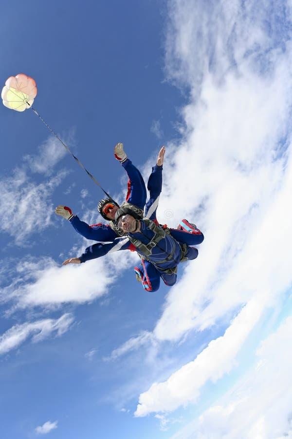 跳照片skydiving的纵排 免版税库存图片