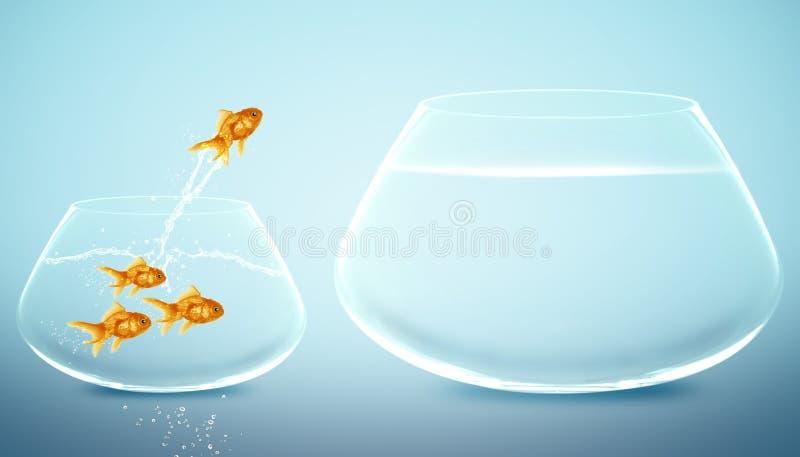 跳的大碗金鱼 向量例证