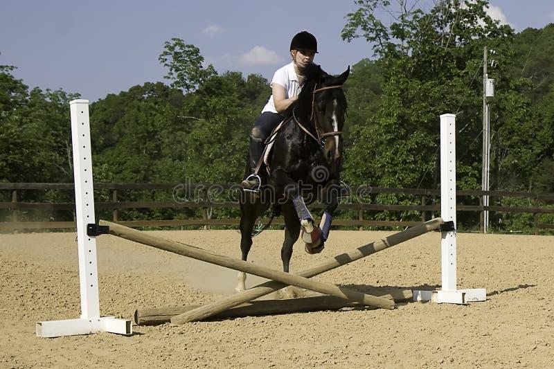 Download 跳的运作 库存照片. 图片 包括有 作用, 障碍, 利息, 骑马, 飞跃, 敌意, 龙舌兰, 宠物, 女孩 - 3659732