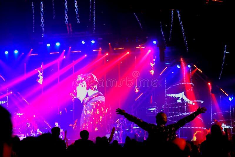 跳舞与在音乐会的阶段光的人们 免版税库存图片