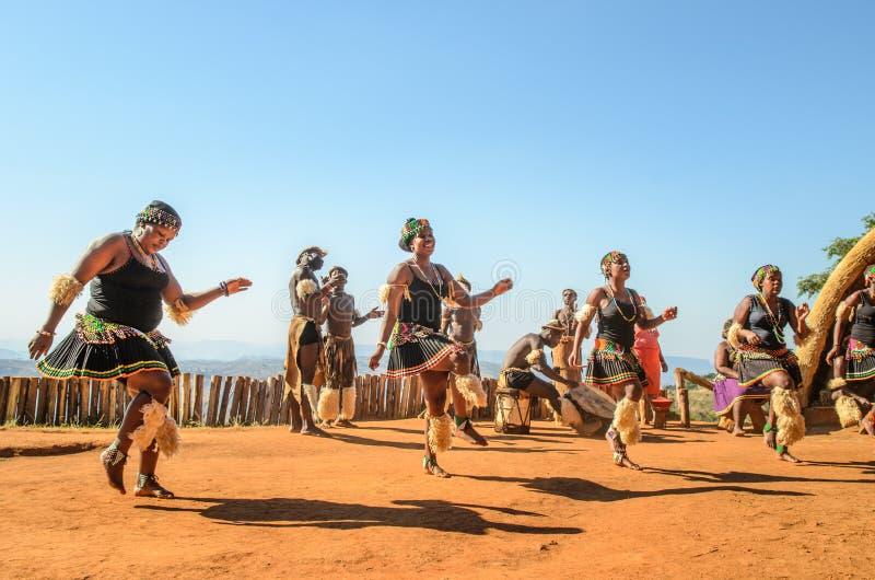 跳舞和跳跃在传统衣裳,齿轮的非洲祖鲁族人人民 生活方式南非 库存照片