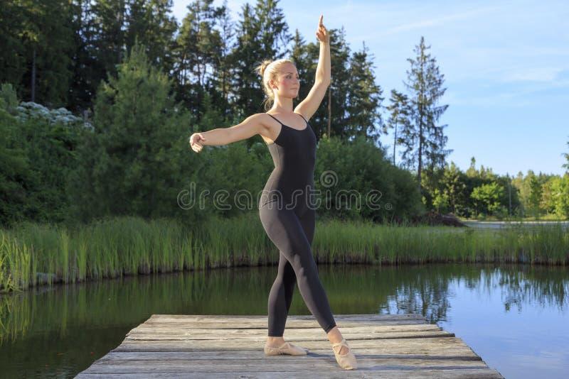 跳舞在梨 免版税图库摄影