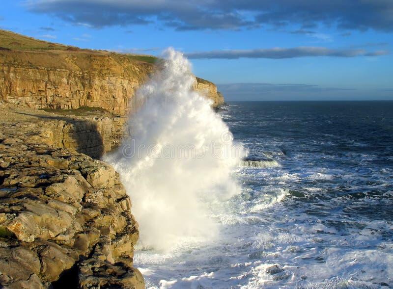 Download 跳舞多西特壁架 库存照片. 图片 包括有 沿海, lit, 海边, 海浪, 晒裂, 通知, 蓝色, 壁架, 大量 - 51336
