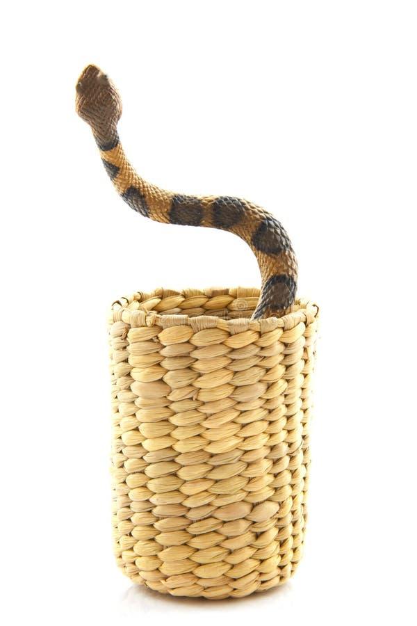 跳舞蛇 免版税图库摄影