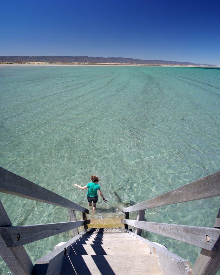 跳船下来桨步骤 库存照片