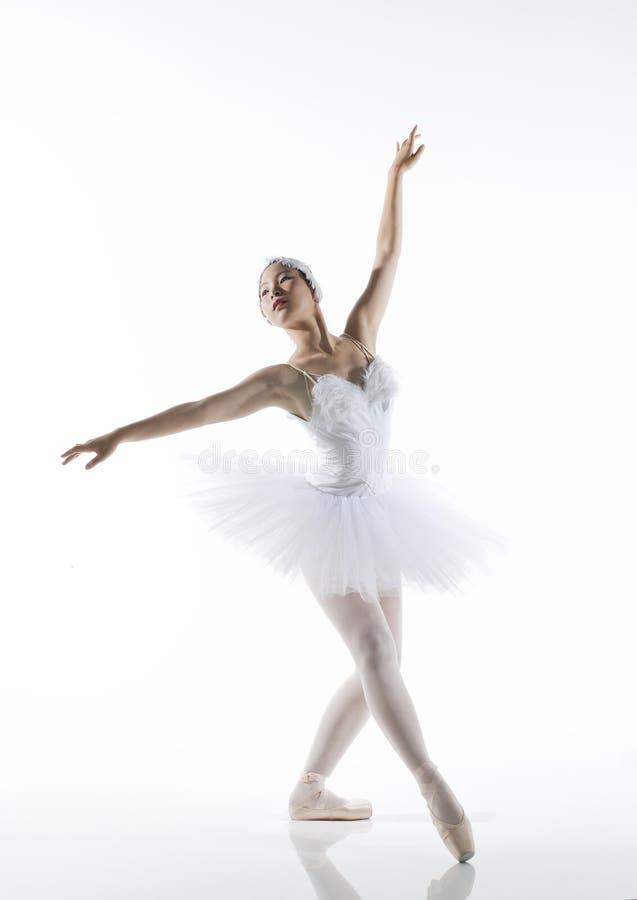 跳芭蕾舞者 免版税库存照片