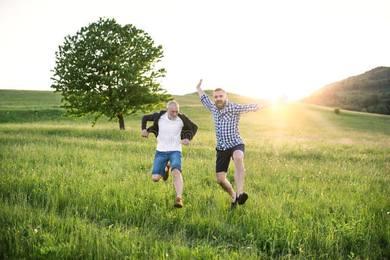 跳跃本质上的一个成人行家儿子和他的资深父亲在日落 免版税库存照片