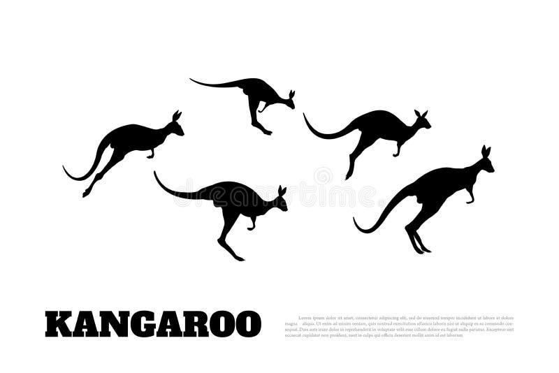 跳跃的袋鼠黑剪影在白色背景的 鼠的被隔绝的图画 向量例证