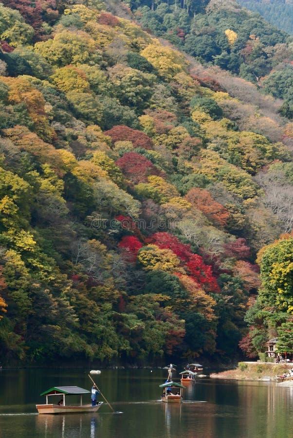 踢游人的船员小船能享受沿Hozu河河岸的秋天视图在Ar 库存照片