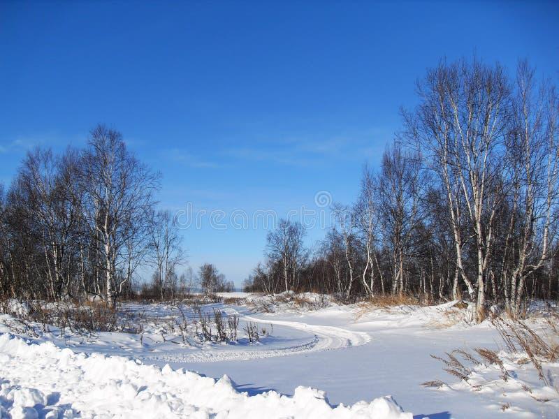 踪影雪上电车 图库摄影