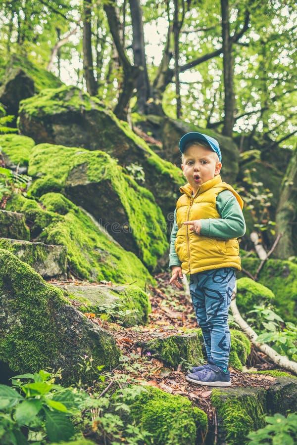 蹒跚学步的男孩在山里远足 免版税图库摄影