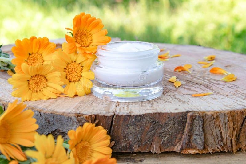 身体关心的奶油与金盏草 在木背景的新鲜的橙色金盏草花本质上 洗涤的化妆奶油 免版税库存图片