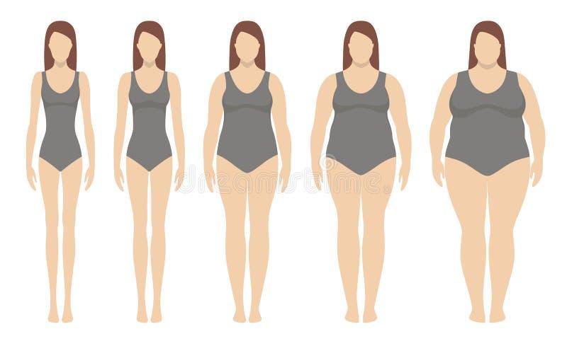 身体容积指数从重量不足的传染媒介例证到极端肥胖 库存例证