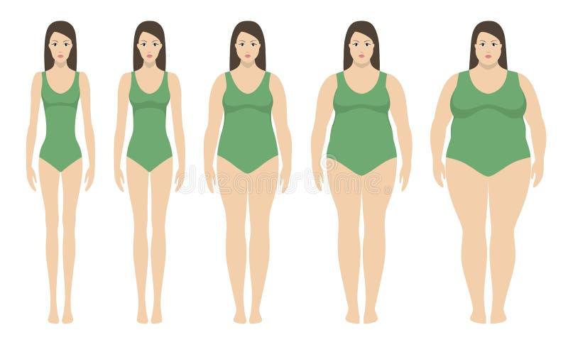 身体容积指数从重量不足的传染媒介例证到extremly肥胖 用不同的肥胖病程度的妇女剪影 皇族释放例证