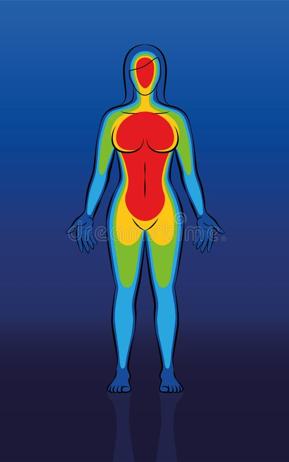 身体热热量图象女性身体 皇族释放例证