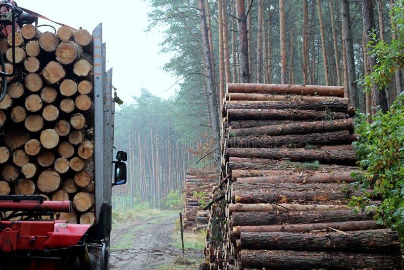 货车使用费木材 库存图片