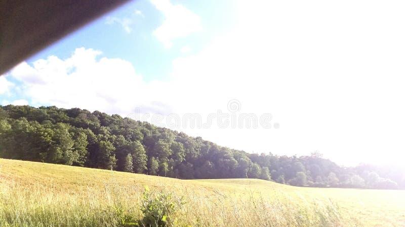 车窗领域 图库摄影