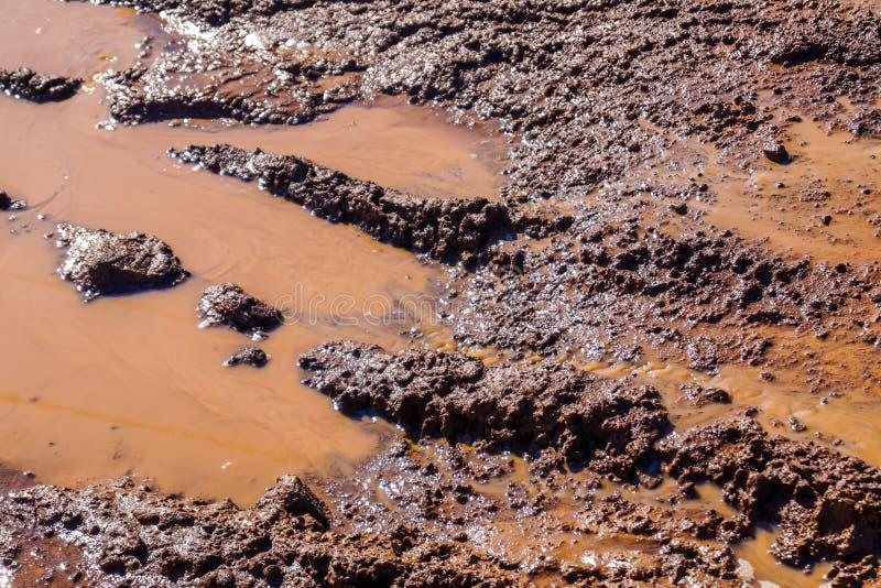 车轮踪影在用土和水盖的土路的 免版税图库摄影