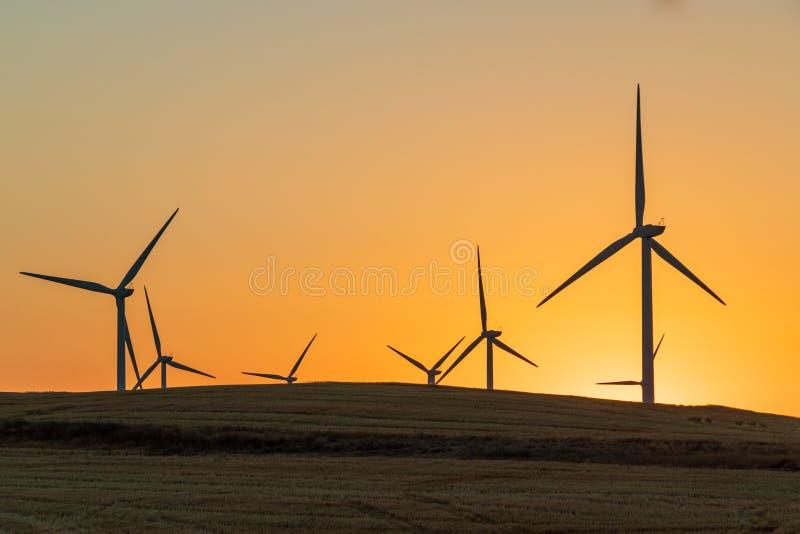 转动在风的风轮机在一块干燥麦田的日落 免版税库存图片