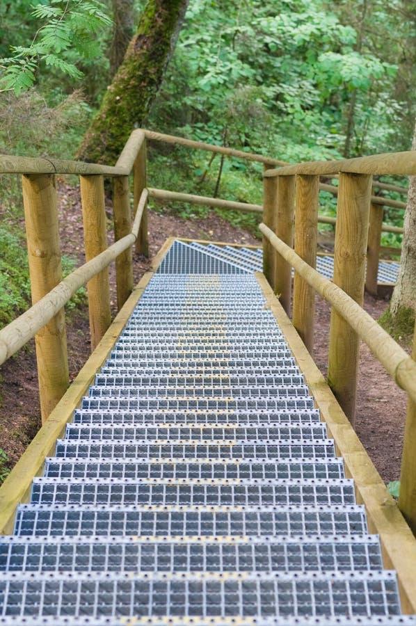 转动的楼梯在夏天森林里 免版税库存照片