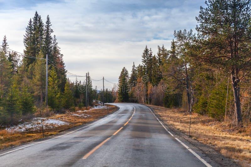 转动的湿农村挪威路 免版税库存图片