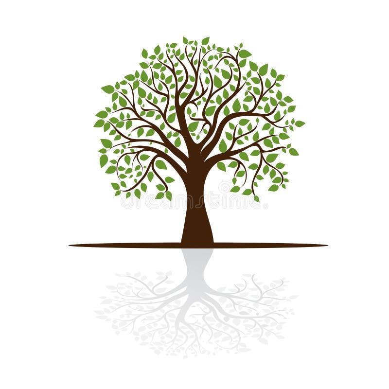 转换安排影子文本结构树 向量例证