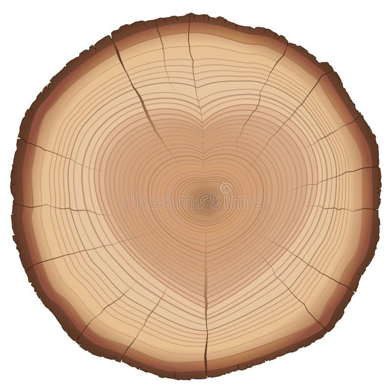 年轮心形的自然爱标志 库存例证