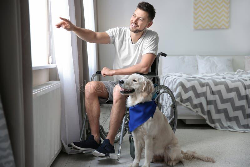 轮椅的人有服务狗的 库存照片