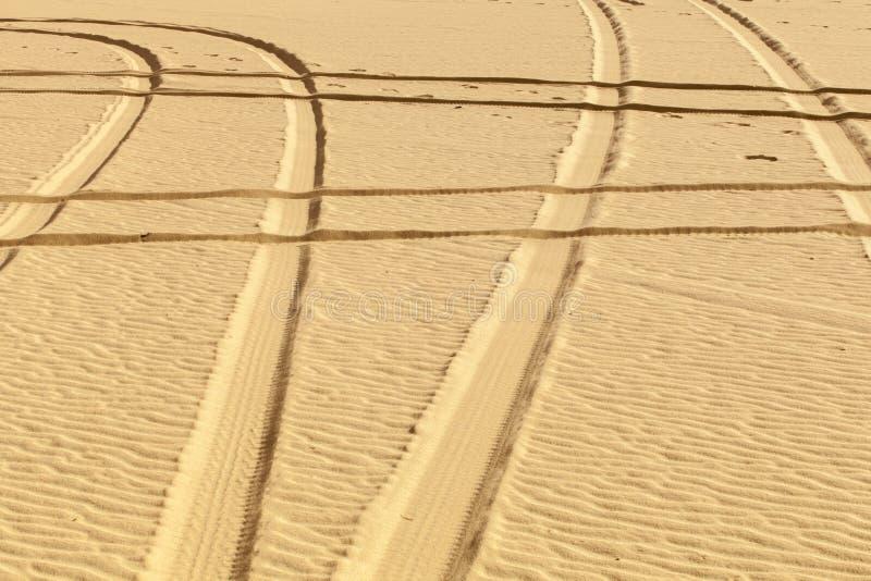 轮胎印刷品在沙漠 库存照片