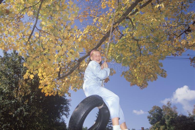 轮胎摇摆的一个女孩在秋天, 免版税库存图片