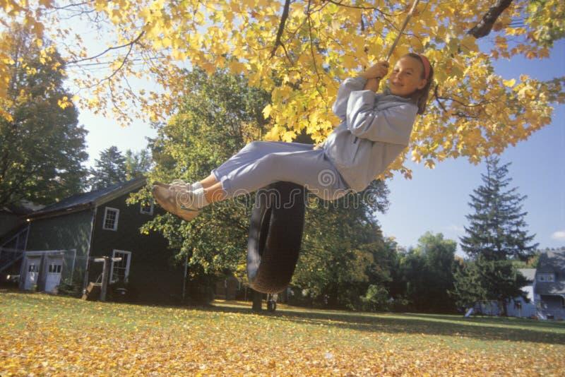 轮胎摇摆的一个女孩在秋天 免版税库存照片