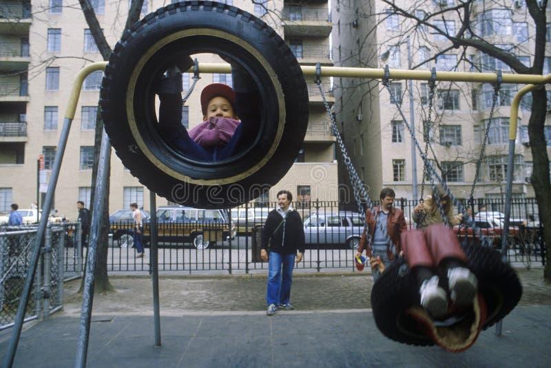 轮胎摇摆的子项在公园 库存照片