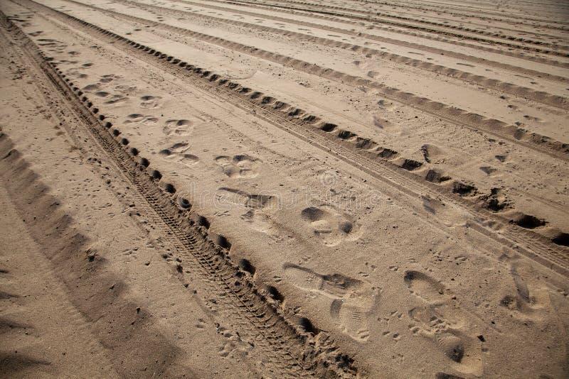 轮胎轨道和脚印在沙子 库存照片