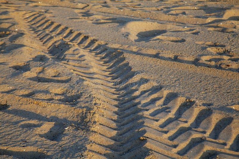 轮胎轨道和脚印在沙子 免版税库存照片