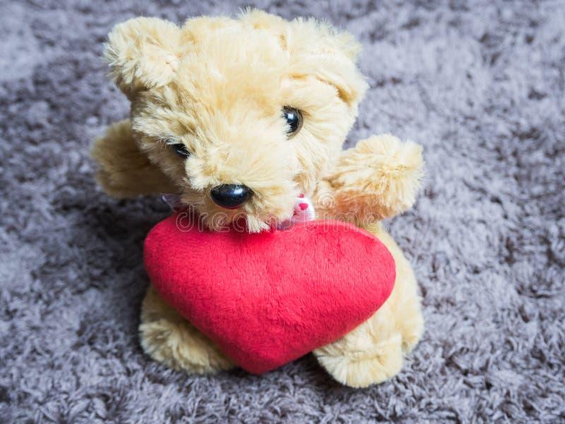软的与心脏的玩具蓬松熊坐地毯 库存照片