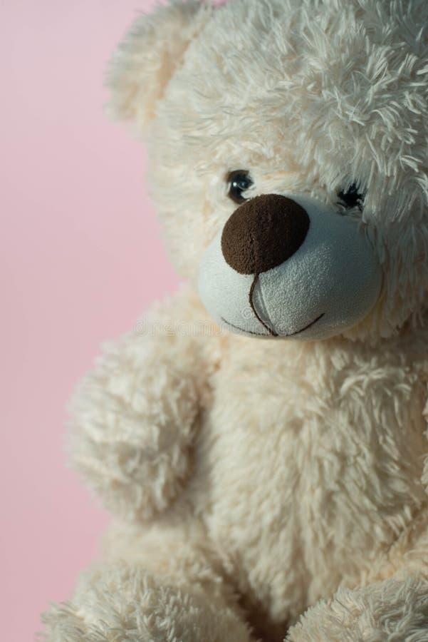 软的玩具'熊' 免版税库存图片