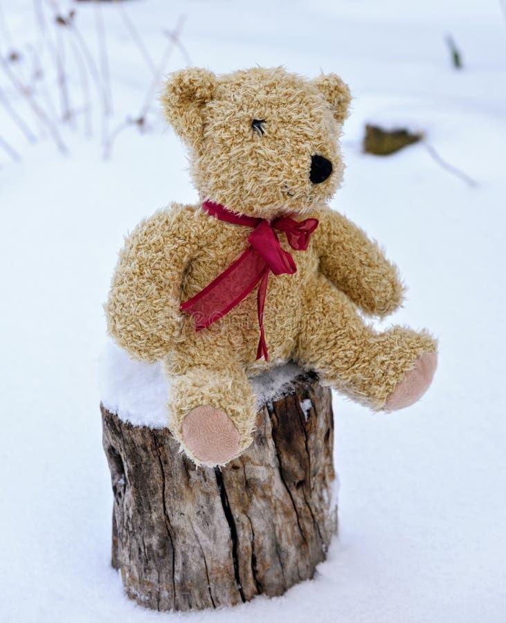 软的玩具熊坐树桩 免版税库存图片