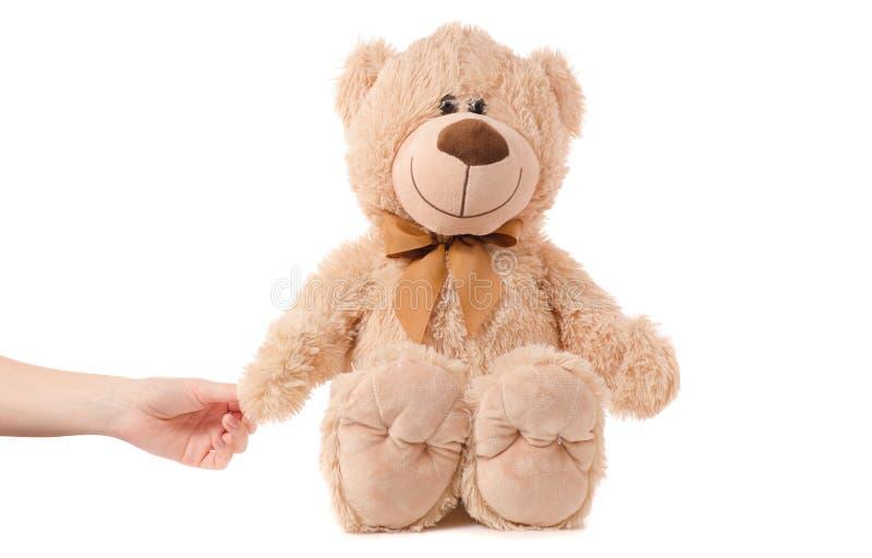 软的玩具米黄熊手 免版税库存图片
