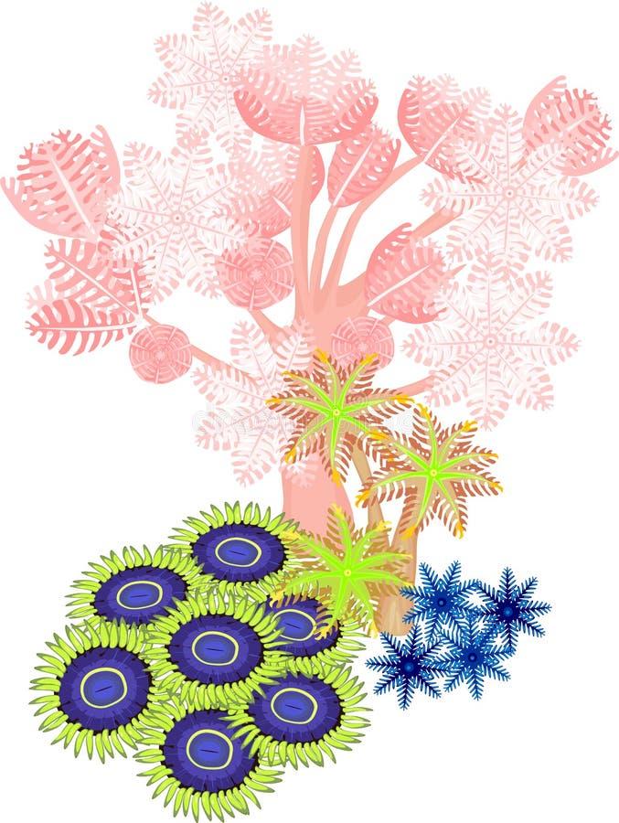 软的珊瑚 皇族释放例证