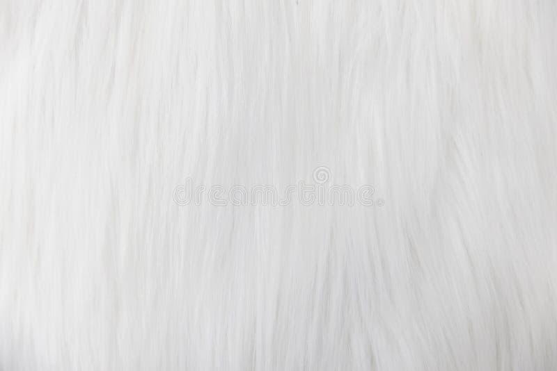 软的米黄蓬松毛皮,羊毛,地毯纹理背景特写镜头  免版税库存照片