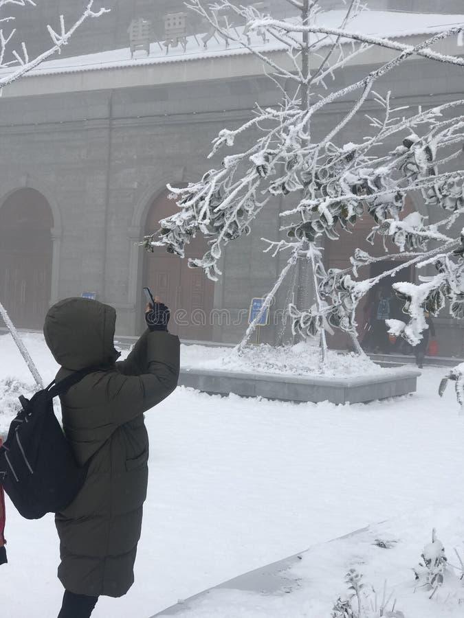 软的霜雪场面在庐山 免版税库存照片