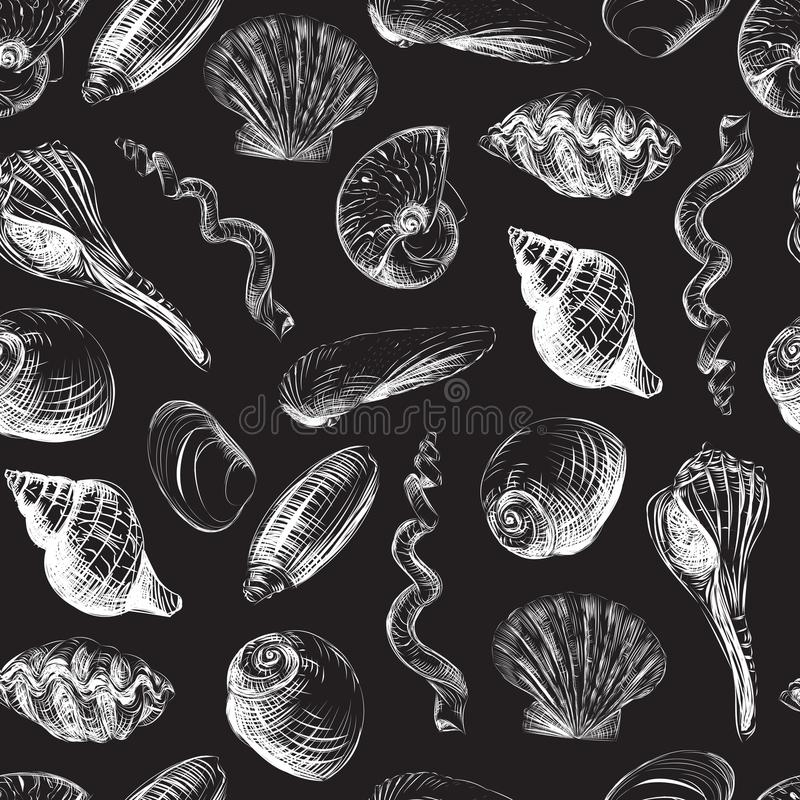 轰击手画无缝的样式 手拉的向量例证 蛤蜊,扇贝,壳 库存例证