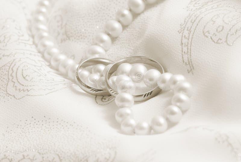 轰隆定调子婚礼的珍珠乌贼属 库存图片