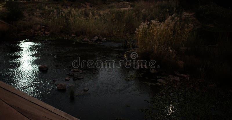 轻反射在黑暗的河水 免版税库存照片