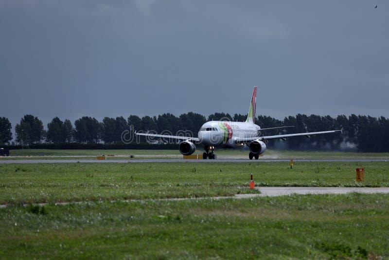 轻拍在跑道的葡萄牙航空飞机在阿姆斯特丹史基浦机场AMS中 库存图片