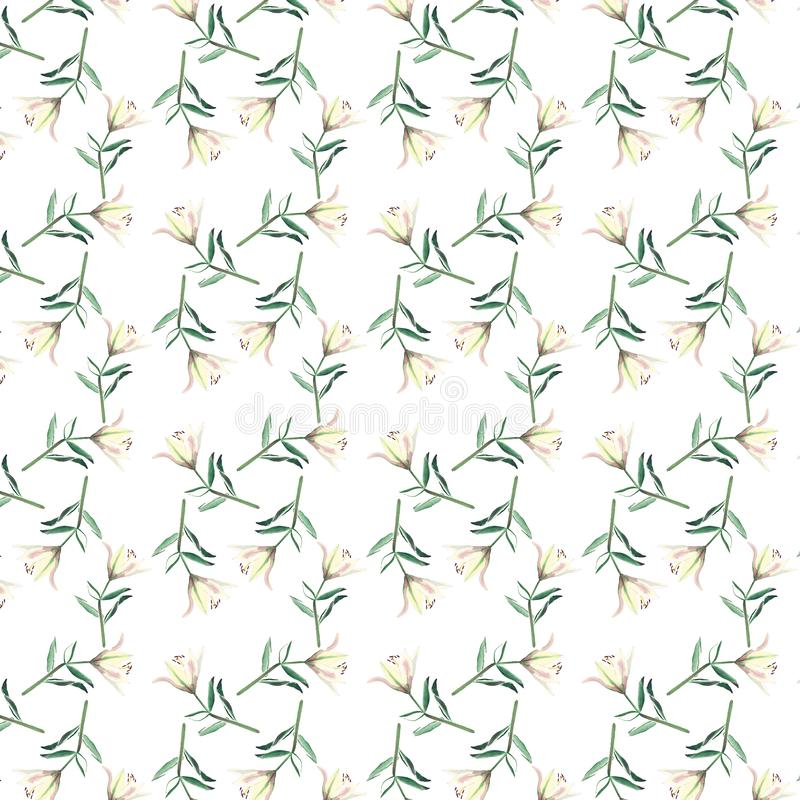 轻拍白色米黄粉状百合水彩的被提炼的美好的无缝的样式 库存例证