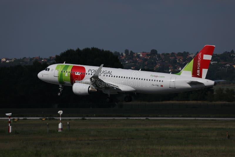 轻拍起飞从跑道的葡萄牙航空飞机 库存照片