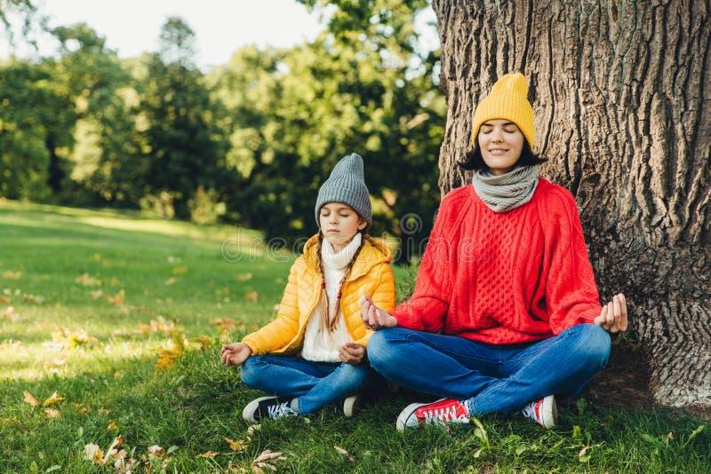 轻松的无忧无虑的妇女和小女儿在莲花姿势坐在树附近在公园,接近的眼睛,尝试集中,实践瑜伽t 免版税库存图片