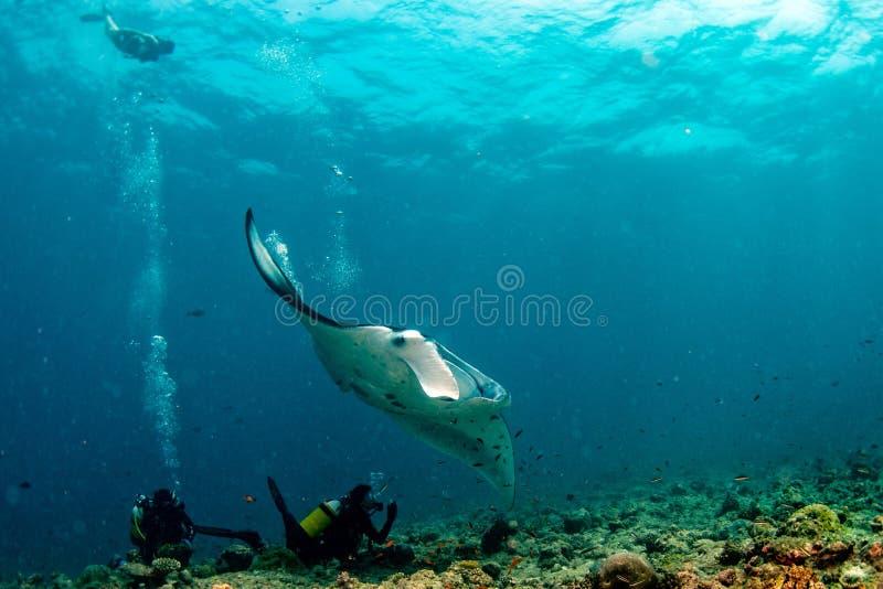 轻潜水员和女用披巾在蓝色海洋背景画象 库存照片