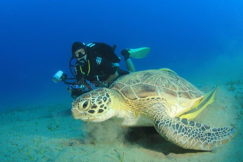 轻潜水员和海龟 免版税库存照片